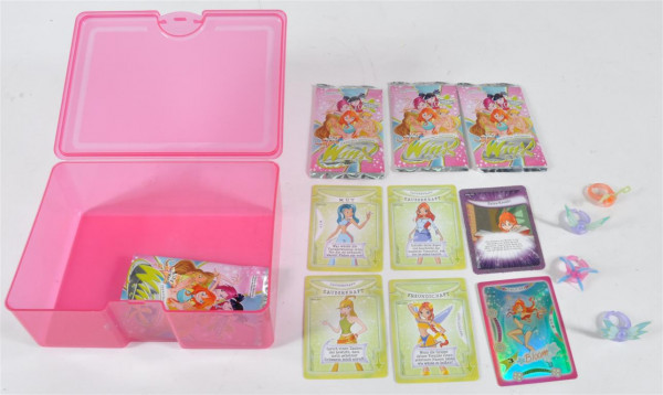 "Brotdose ""Winx Club"" m. 4 Booster ca. 18x13,5x7 cm"
